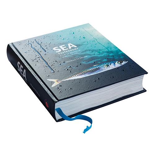 SEA-Special-Ed-500