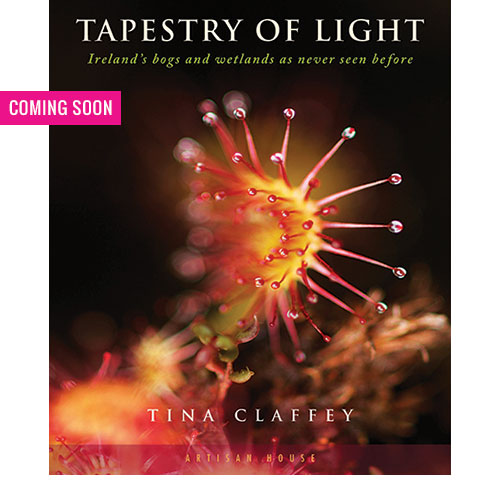 tapestry-of-light-coming-soon
